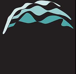Tidelines Institute logo